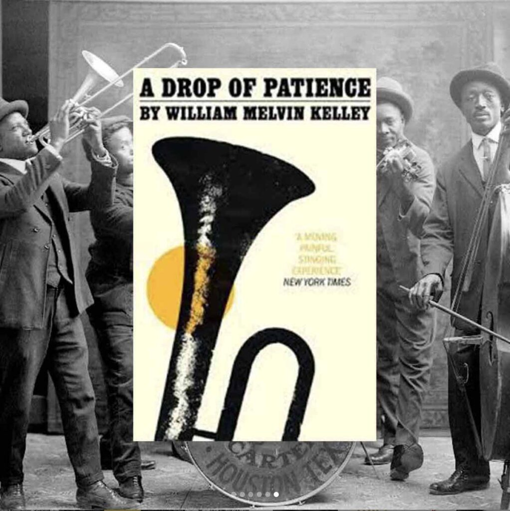 Book cover for A Drop of Patience by  William Melvin Kelley for reading inspiration list