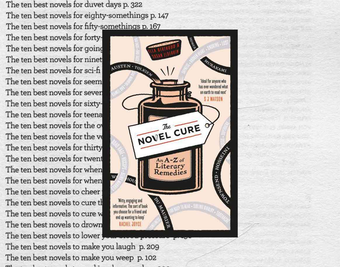 Cover of The Novel Cure book